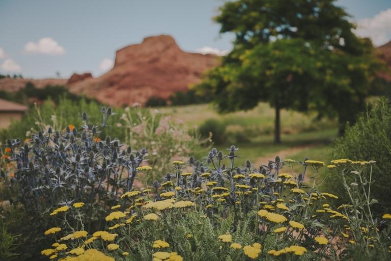 Roxborough Colorado Wedding Photographer 3